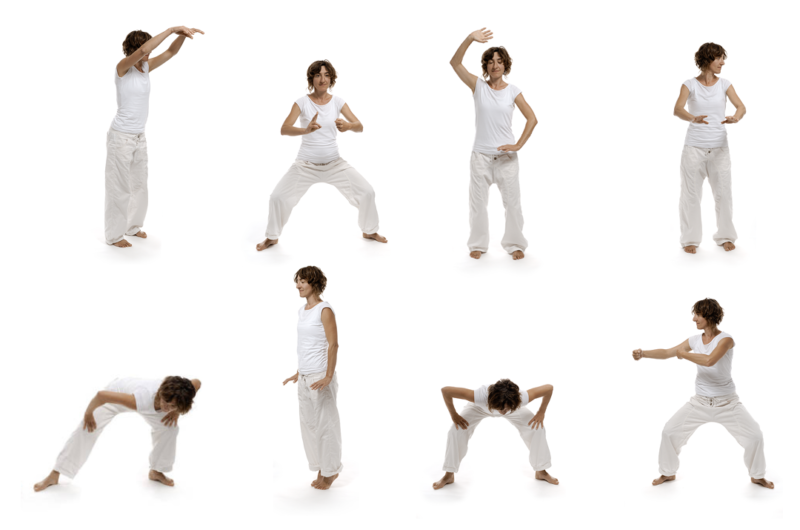 Power of Qi Gong - 8 Brochades